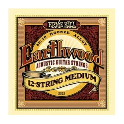 EARTHWOOD MEDIUM 12 CORDES 11-52 EP02012 ERNIE BALL droite