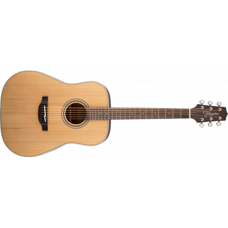 GD20-NS TAKAMINE arriere