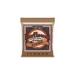Earthwood Phosphore Bronze Light ERNIE BALL arriere