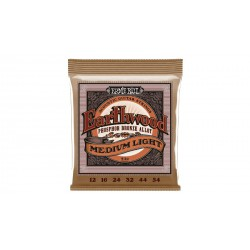 Earthwood Phosphore Bronze Medium Light ERNIE BALL