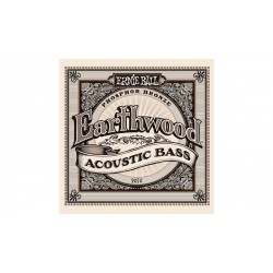 Earthwood basse acoustique ERNIE BALL face