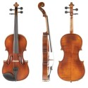 photo de VIOLON ALLEGRO-VL1 dessus
