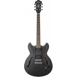 AS53 TKF GUITARE ELECTRIQUE arriere